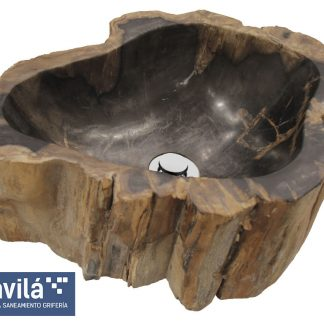 Lavabo fósil (Madera petrificada)
